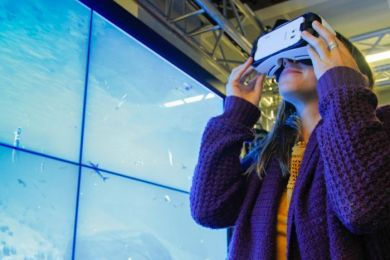 Virtual Reality allowed researchers to monitor the reef without getting wet.  (612 ABC Brisbane: Jessica Hinchcliffe)